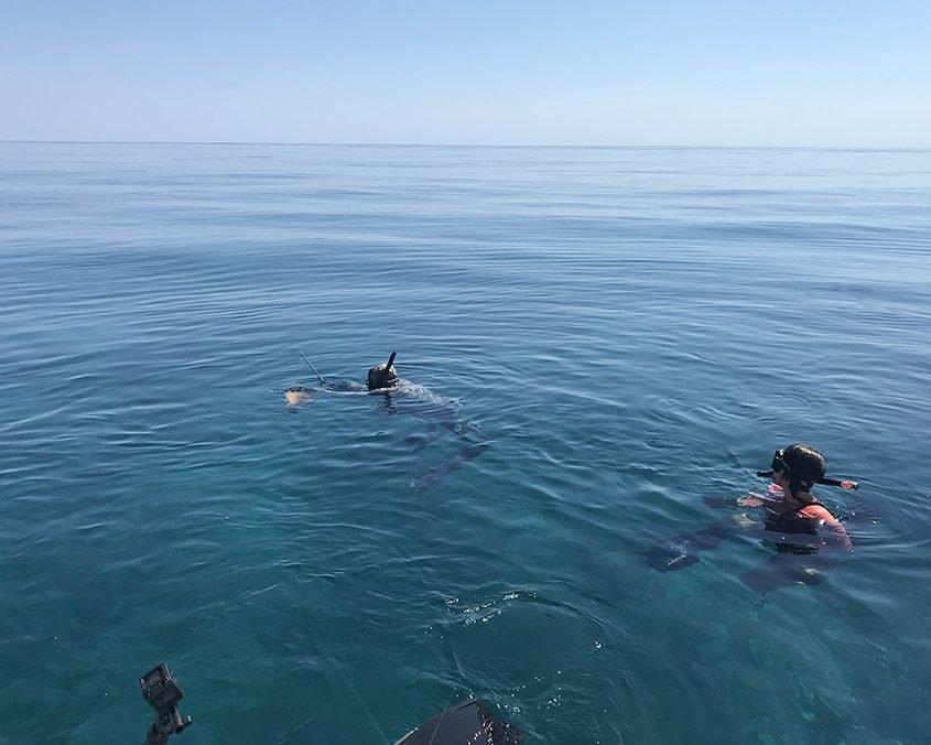 Bahamas spearfishing trip IMG 3905 web 2