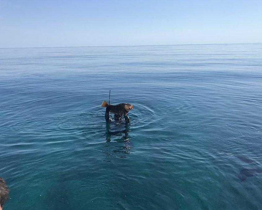 Bahamas spearfishing trip IMG 3909 web 2