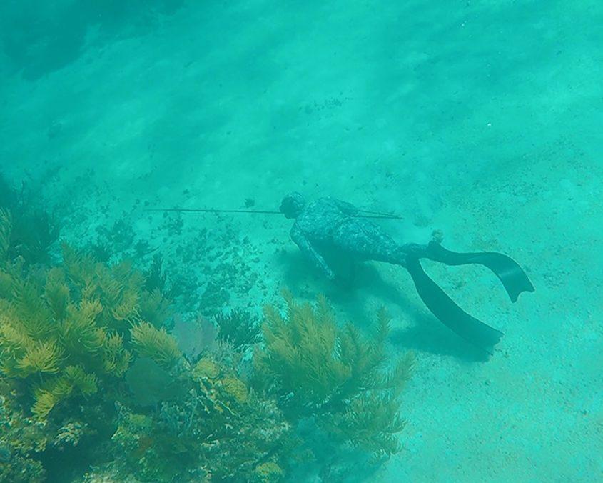 Bahamas spearfishing trip IMG 3992web 2