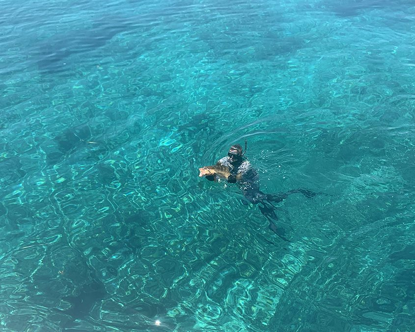 Bahamas spearfishing trip IMG 6657 web 2