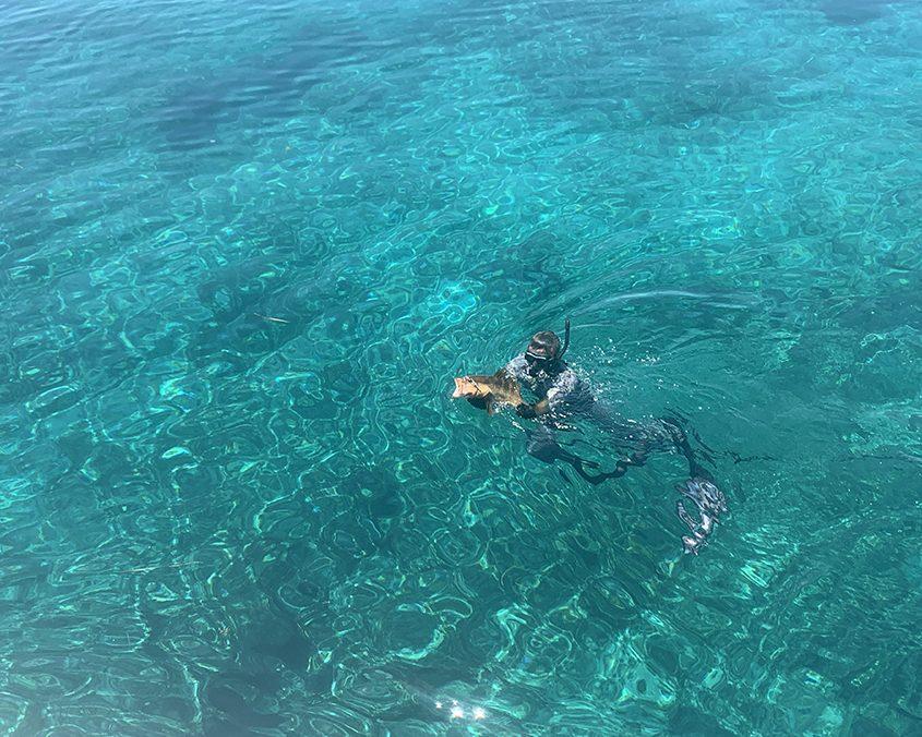 Bahamas spearfishing trip IMG 6658 web 2
