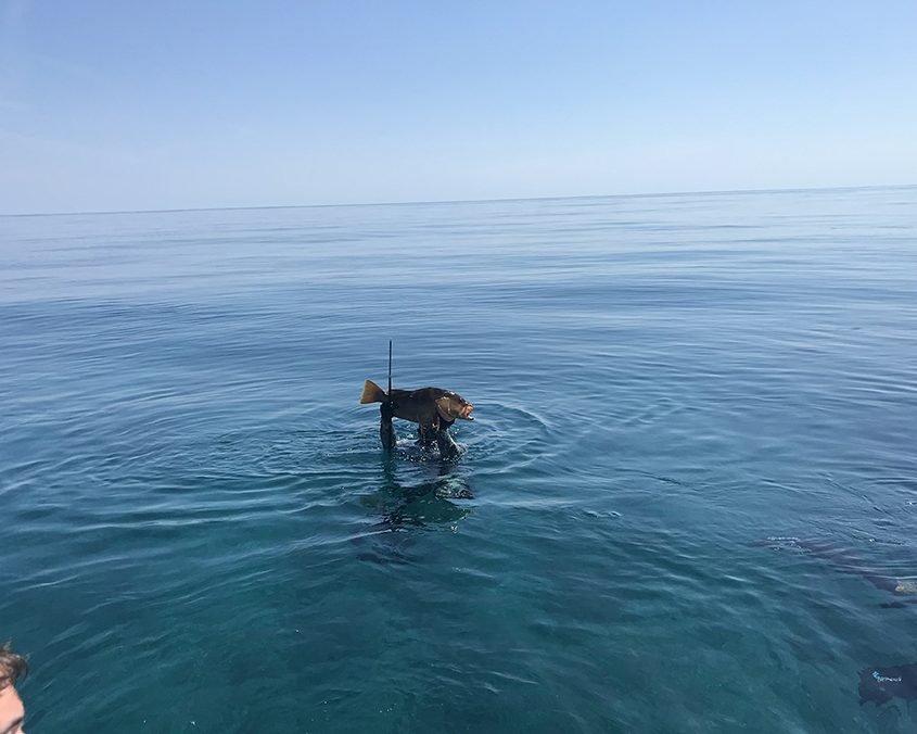 spearfishing Bahamas IMG 3908web 2